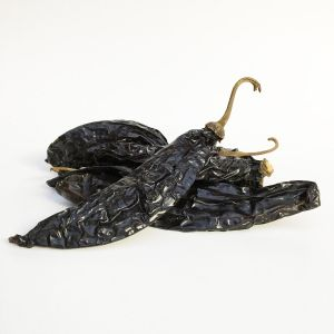 Whole dried Pasilla chilli
